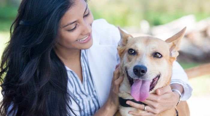 Best Pet Dogs for Home in India